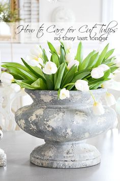 HOW TO CARE FOR CUT TULIPS SO THEY LAST LONGER- Here are some easy and practical tips for giving cut tulips a longer life in your home!