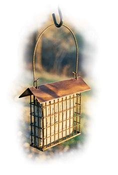Copper Top Single Suet Cage. Complete with handle for hanging. Holds one suet cake. Beautiful brushed copper roof.  #suetfeeder #birdfeeder #suetcage #suetbasket