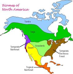 Biomes of North America - ThingLink, Continents Activities, Geography Activities, Kid Activities, Teaching Science, Life Science, Earth Science, Grassland Biome, Temperate Deciduous Forest, Desert Biome