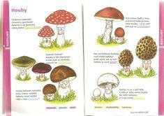 School Humor, Funny School, Pavlova, Montessori, Stuffed Mushrooms, The Originals, Kids, Education, Kindergarten