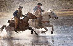 cowboys running horses - lisa dearing photography