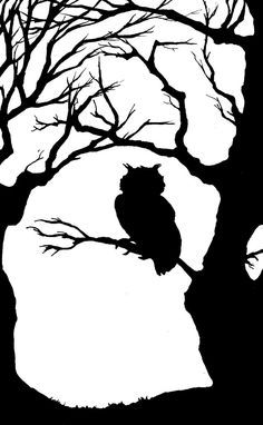 silhouette of an owl in a tree Owl Silhouette, Silhouette Images, Silhouette Projects, Kirigami, Stencil Art, Stencils, Star Stencil, 3d Templates, Nocturnal Animals