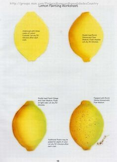 Lemon worksheet by Priscilla Hauser. Lemon Painting, Fruit Painting, One Stroke Painting, China Painting, Tole Painting, Watercolour Painting, Painting & Drawing, Lemon Watercolor, Painting Lessons