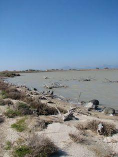 The Tigkaki Salt pan in the the Dikaios area on the island of Kos in Greece  http://www.discoveringkos.com/