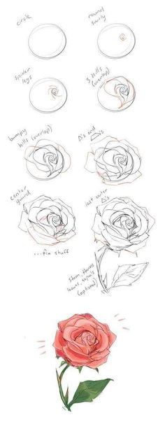 How to draw flowers and turn these drawings into really cool wall art - Craft-Mart how to draw a rose step by step drawing guide. Learn how to draw flowers like roses of lilies and turn them into really beautiful wall art. Dark Art Drawings, Art Drawings Sketches, Easy Drawings, Zentangle Drawings, Realistic Drawings, Pencil Drawings, Rose Sketch, Flower Sketches, Flower Drawings