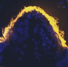 Shake that hair, Robert! (click image for gif)