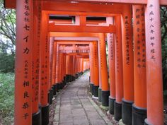 The perfect one day Kyoto itinerary, although you will ave to pack it in as there is so much to see in Kyoto and I do advise you stay longer if you have the opportunity. If you do only have one day, this post will help you best utilise that time. Kyoto Travel Guide, Travel Guides, Travel With Kids, Family Travel, Kyoto Itinerary, Tourist Spots, Where To Go, Places To Visit, Day
