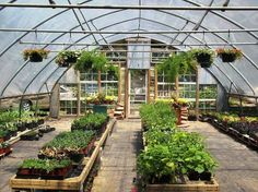 Greenhouse Farming is the process of cultivating crops and vegetable. If you have a greenhouse or are considering setting up one, then we'll share what greenhouse plants grows best inside. Greenhouse Wedding, Greenhouse Gardening, Tunnel Greenhouse, Kids Shed, Garden Arbor, Garden Sheds, Flea Market Gardening, Potting Sheds, Gardening