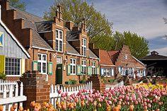 Annual Tulip Festival in Holland, Michigan at Windmill Island Park