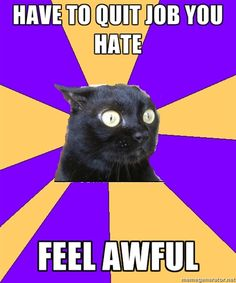 Anxiety Cat- How I felt about quitting FH