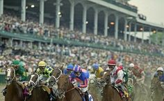 What the Kentucky Derby is Like for Horses