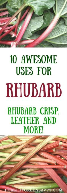 10 wonderful uses for rhubarb, a healthy, low-calorie vegetable used as a fruit. Click to read more or pin to save for later. | rhubarb recipes | healthy treats | edible landscaping | healthy food |. Rhubarb leather