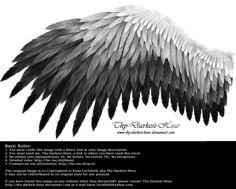 Romantic Wing - White-Black by Thy-Darkest-Hour.deviantart.com on @DeviantArt