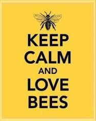 Image result for honeybee quotes