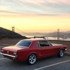 Beautiful '66 Mustang with a view of the Golden Gate Bridge in San Francisco!  Photo via: @ClassicStangs #Ford #Mustang #ClassicCarsWorld by classiccarsworld