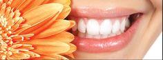 Diş taşları hangi aralıklarla temizletilmeli ?
