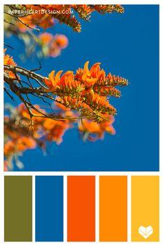 Color Palette: Outstanding Orange — Paper Heart Design Orange Palette, Orange Color Palettes, Blue Colour Palette, Orange Color Combinations, Colour Schemes, Color Trends, Pop Art Colors, Color Pop, Paint Colors