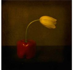 Jack Spencer History Of Photography, Still Life Photography, Cultural Significance, Contemporary Photography, Old Art, William Morris, Book Making, Photographers, Artist