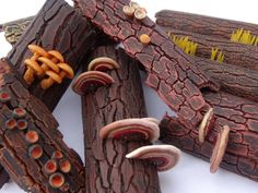Polymer clay tutorial Polypores on bark by JanaHonnerova on Etsy