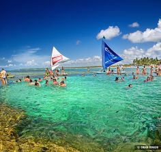 Porto de Galinhas - Pernambuco  | Vertorama by Omar Junior, via Flickr