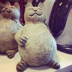 Pier 1 Fat Cat Stone-oooooo I need this for my garden I think. Pottery Animals, Ceramic Animals, Clay Animals, Clay Cats, Paperclay, Cat Crafts, Animal Sculptures, Clay Projects, Crazy Cat Lady
