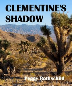 #IndieBooksBeSeen: Clementine's Shadow by Peggy Rothschild