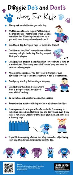 Just for kids! This dog safety tip sheet has important do's and don'ts for…