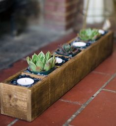 This lovely rustic box is 21.75 inches long, 3.33 inches tall and 3.33 inches wide. Each niche is about 2.75 inches wide. Its multi-functional: Use it as a succulent planter or a clever display for crystals or curios. We can add a bracket to the back, if you would like to hang it on a wall to use as a shelf.  (Plants & candles not included :)