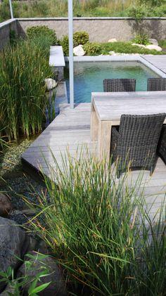 malý bazén s přírodní vodou u posezení / small pool with natural water near the seating area