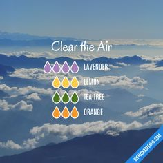 oil aromatherapy Clear the Air — Essential Oil Diffuser Blend Air Cleaning - Essential Oil Diffuser Mixture Essential Oils Guide, Essential Oil Uses, Doterra Essential Oils, Essential Oil Combinations, Essential Oil Diffuser Blends, Doterra Diffuser, Relaxing Essential Oil Blends, Young Living Oils, Belleza Natural