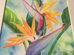ORIGINAL ART Tropical Flower Bird of Paradise by ChristieMarieART