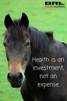 Health is an investment, not an expense #BRLEquine #EQRoyal #UnLock brlequine.com