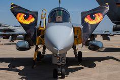 Zaragoza NTM16 : Tiger Eyes Czech Gripen 9236
