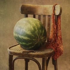 foto: Sobre uma melancia .... | Fotógrafo: Liliya | WWW.PHOTODOM.COM
