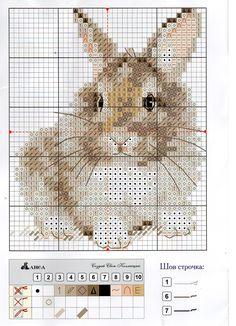 2.jpg 1,158×1,600 pixels