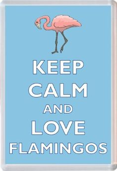 Keep Calm and Love Flamingos - Novelty Jumbo Fridge Magnet Gift/Souvenir/Present, http://www.amazon.co.uk/dp/B00I0VHFFE/ref=cm_sw_r_pi_s_awdl_J7.Ixb0JYY5G2