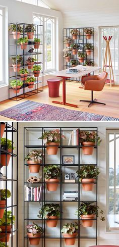 53 Indoor Garden Idea – Hang Your Plants From The Ceiling & Walls - The Architects Diary