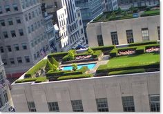 #greenroofs are the future for sustainable businesses and green buildings