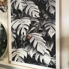 Another one of the new framed prints just arrived this week...mmm... Get in quick as I have my eye on this one! #ihavejustthespot #philodendren #botanical #art #framed #photographicart #shutthefrontdoorstore #stfdnz #ponsonby #takapuna #interiors #interiorinspiration