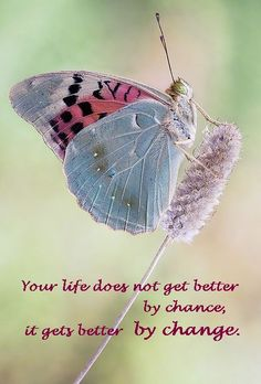 change and life will be better