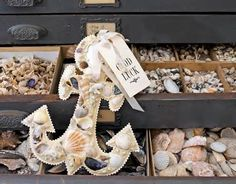 Image detail for -Compact Disc Seashell Craft - Project 1 - InfoBarrel