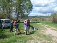 Nature surveillance in Abrera, on the Natura 2000