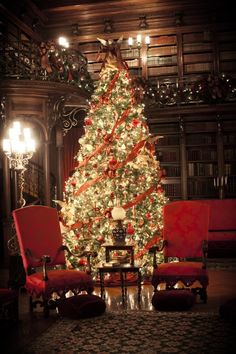 Biltmore Estate Library at Christmas