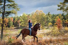 Equestrian rides her beautiful horse bareback in a golden field during equine photography in Saratoga Springs, NY