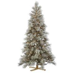"Vickerman 31593 - 8' x 55"" Flocked Norway Pine 800 Clear Miniature Lights Christmas Tree (G135981) Vickerman http://www.amazon.com/dp/B00EB1U3AQ/ref=cm_sw_r_pi_dp_RlWtub0GM6Y84 435"