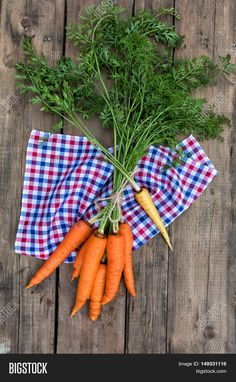 Bunch Of Fresh Garden Carrots With Green Leaves
