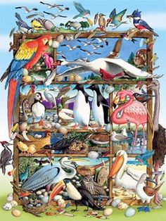 Birds of the World is a 400 piece Family jigsaw puzzle from Cobble Hill featuring artwork of all types of birds. Puzzles 3d, Puzzles For Kids, Gustav Klimt, Peppa Pig, Puzzle New York, La Petite Taupe, Redhead Duck, Create Your Own Puzzle, World Puzzle