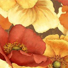 Windflower - Large Poppies on Chocolate - Daphne B