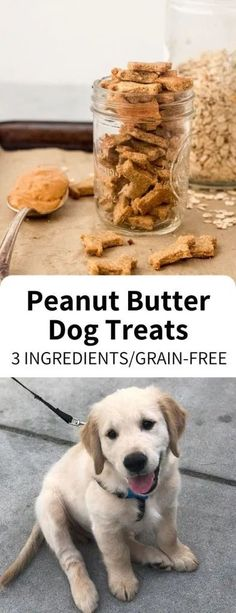 Homemade Dog Treats Ingredients) – Garlic Head Homemade Dog Treats made easy with just 3 ingredients, ready in 20 minutes! Wheat free and full of peanut butter, your dog or puppy will love these simple snacks. Puppy Treats, Diy Dog Treats, Healthy Dog Treats, Homeade Dog Treats, Dog Biscuit Recipes, Dog Food Recipes, Snacks Recipes, Recipes Dinner, Yummy Recipes
