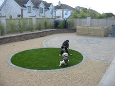 low-maintenance, dog-friendly landscaping. i would do two areas, probably—one for potties, one for play.